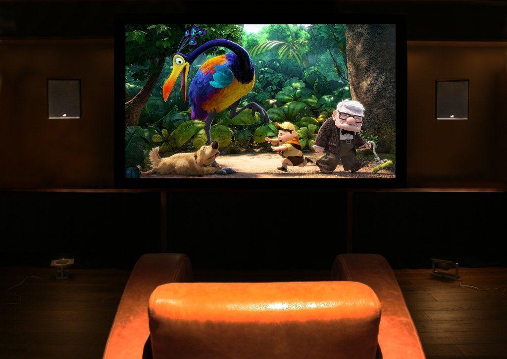 Gecko dem room 1.jpg