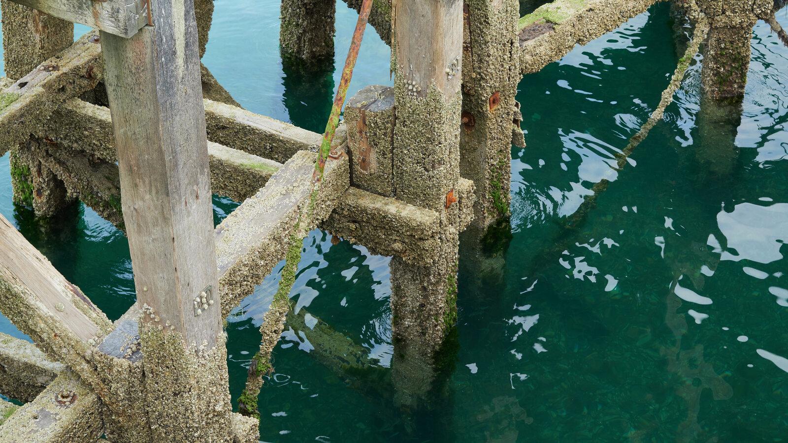 Pier legs.jpg