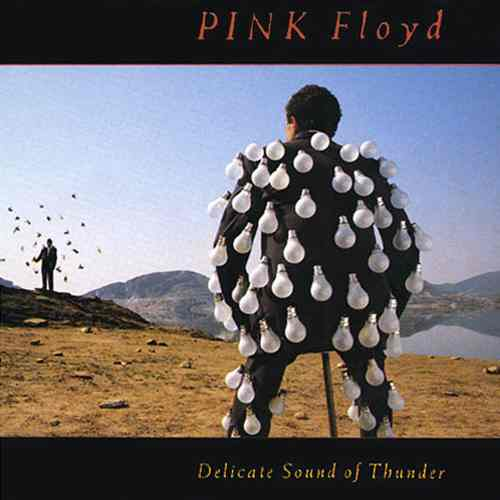 Pink_Floyd_-_Delicate_Sound_of_Thunder.jpg