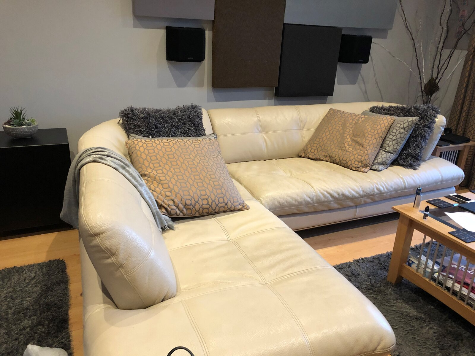 Sofa Pic.jpg