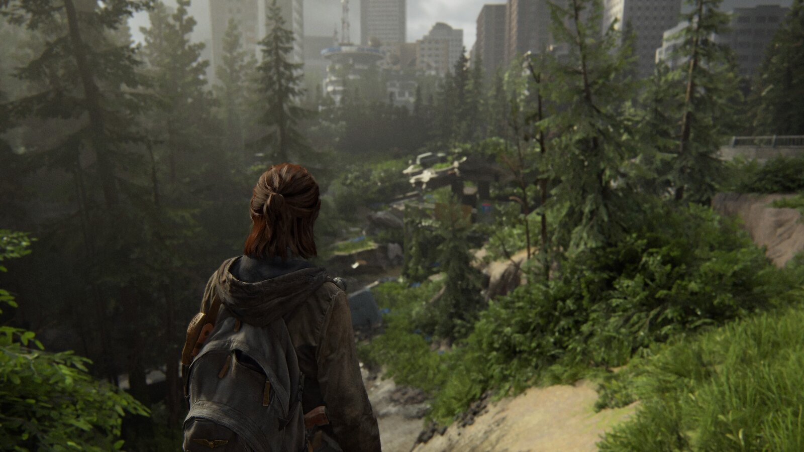 The Last of Us™ Part II_20200620225839.jpg