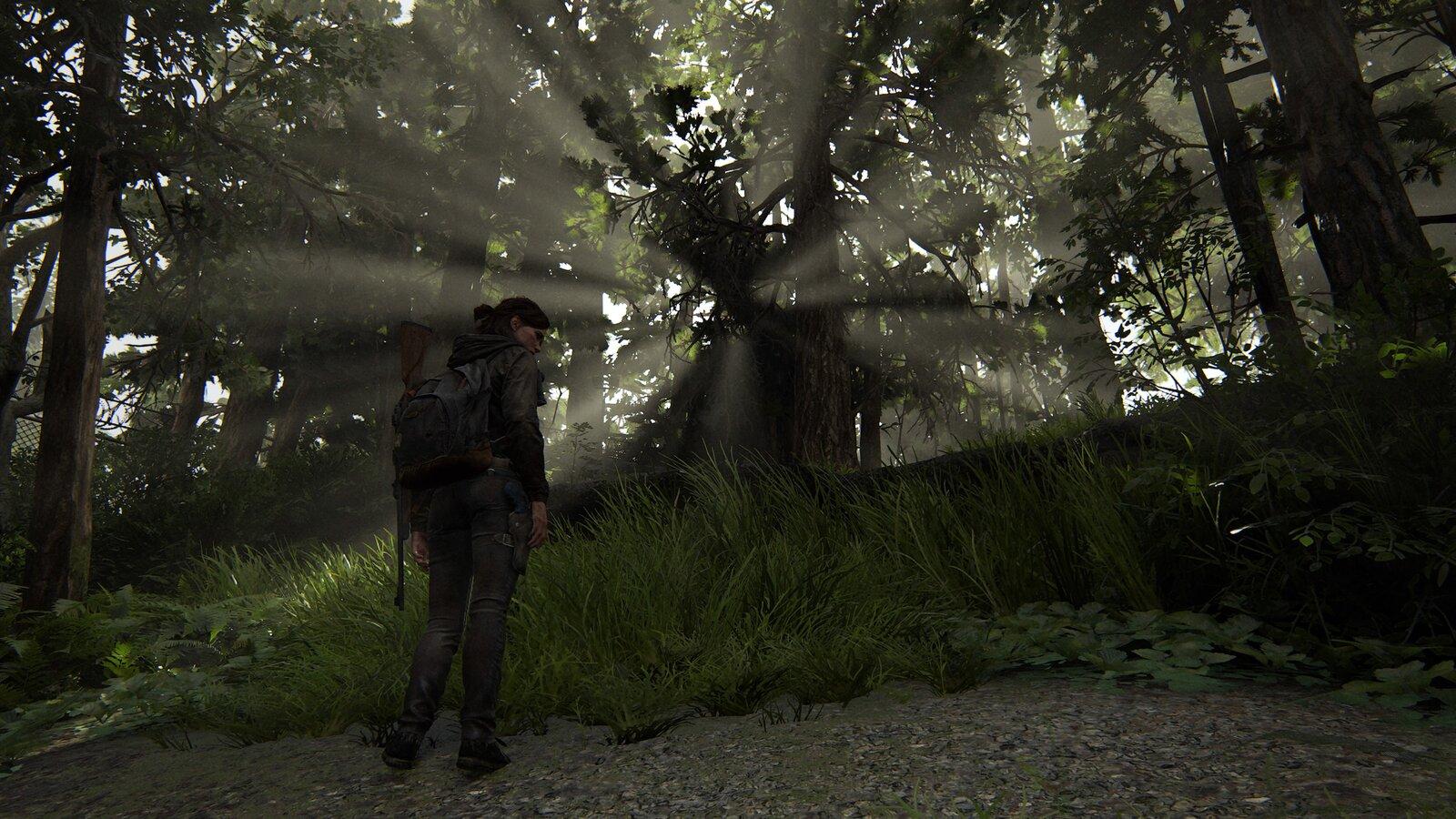 The Last of Us™ Part II_20200620231454.jpg