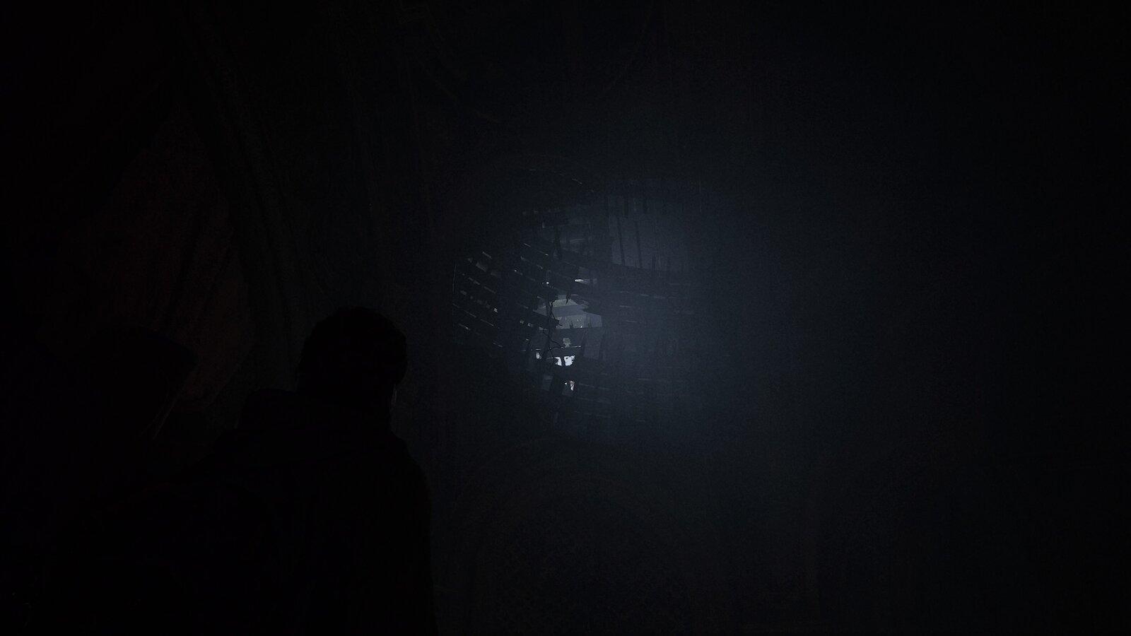 The Last of Us™ Part II_20200621131446.jpg