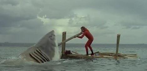 ultimo squalo.jpg