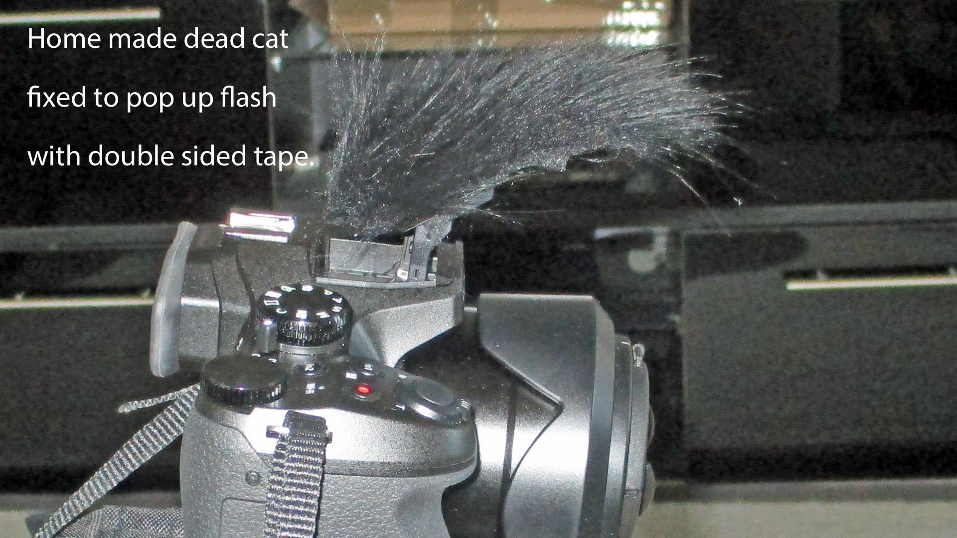Panasonic PV-GS39 Camcorder External Microphone