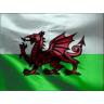Welshman10