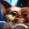 raigraphixs