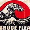 BruceFlea