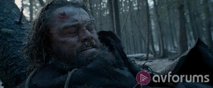 The Revenant Steelbook Picture Quality
