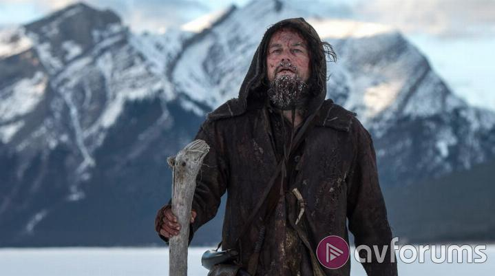 The Revenant Picture Quality