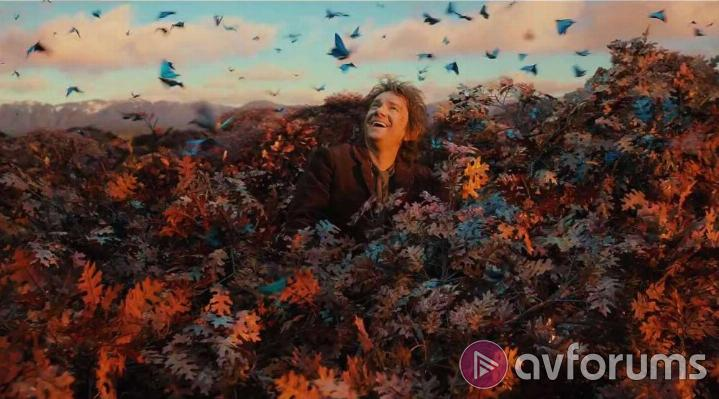The Hobbit: The Desolation of Smaug The Hobbit: The Desolution of Smaug Blu-ray Picture Quality
