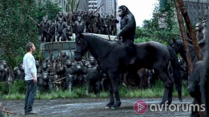 Dawn of the Planet of the Apes Picture Quality