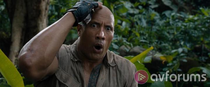 Jumanji: Welcome to the Jungle Picture Quality