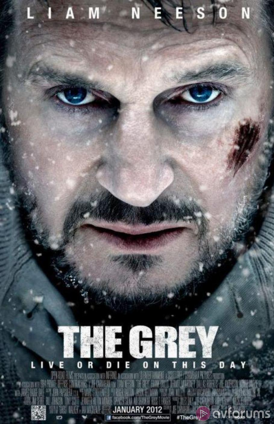 The Grey Review