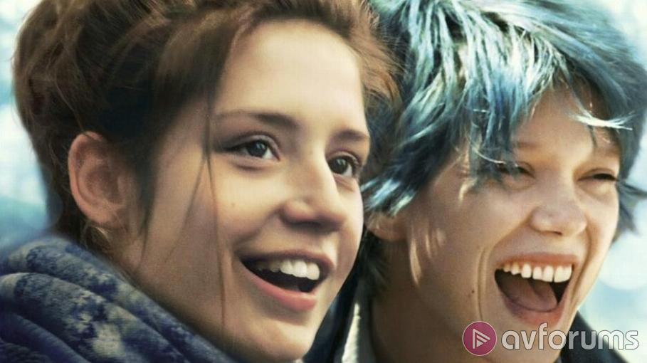 Blue is the Warmest Colour Blu-ray Review
