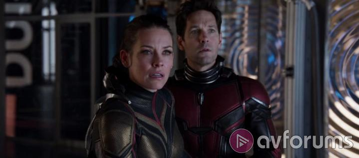 Ant-Man and the Wasp Ant-Man and the Wasp 4K Picture