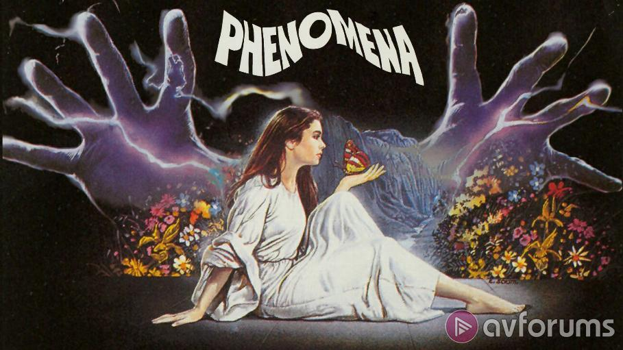 Phenomena Review