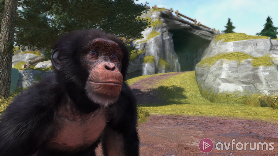 Zoo Tycoon Xbox One Review