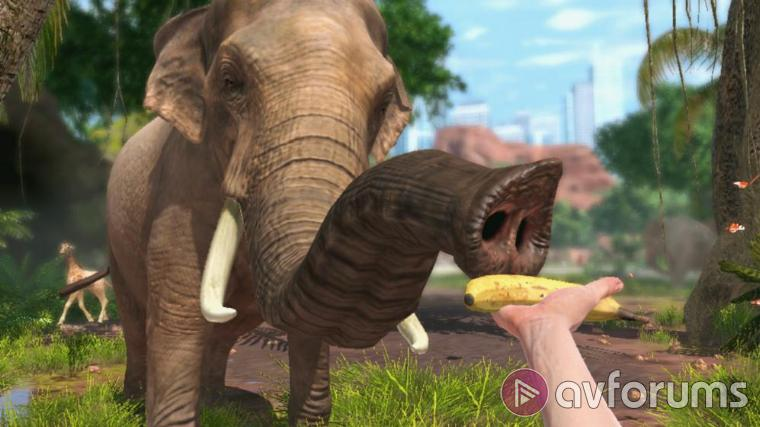 Zoo Tycoon Touch, play