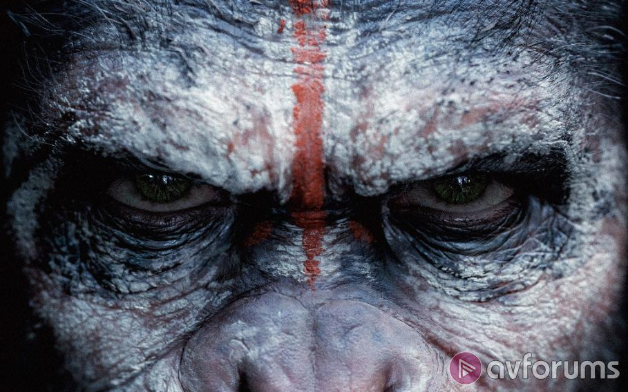 Dawn of the Planet of the Apes Ultra HD Blu-ray Review