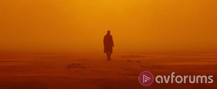 Blade Runner 2049 Picture Quality