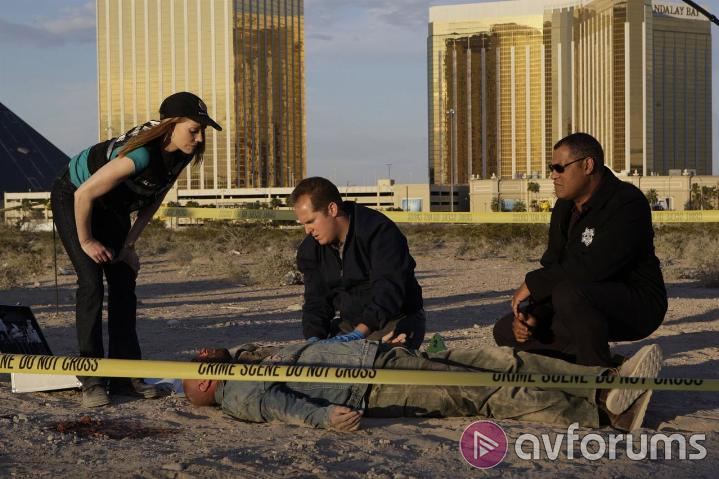CSI: Crime Scene Investigation: The Complete Ninth Season Sound