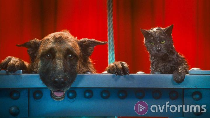 Cats & Dogs: The Revenge of Kitty Galore 3D Extras