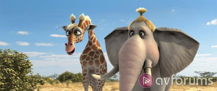 Animals United 3D Picture