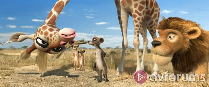 Animals United 3D Extras