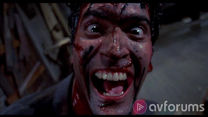Evil Dead II Special Edition Picture