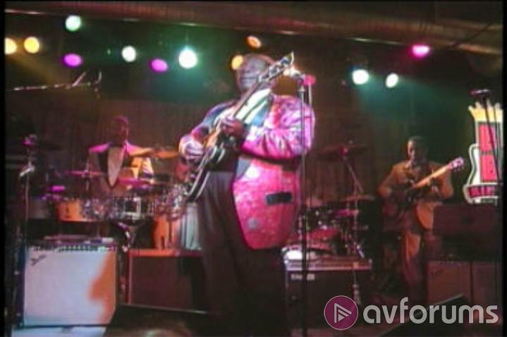 B.B. King: Blues Summit Concert Picture
