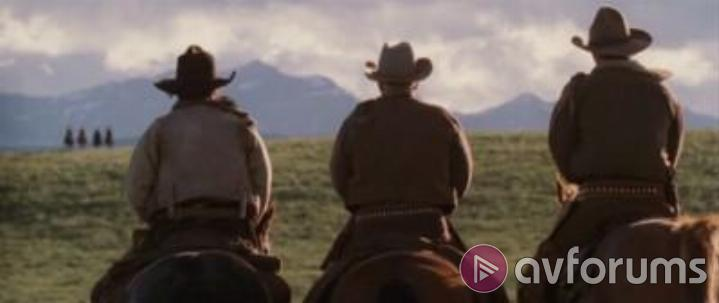 Open Range 2 Disc Collector