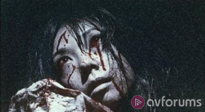 Ju-On: The Grudge 2 Picture