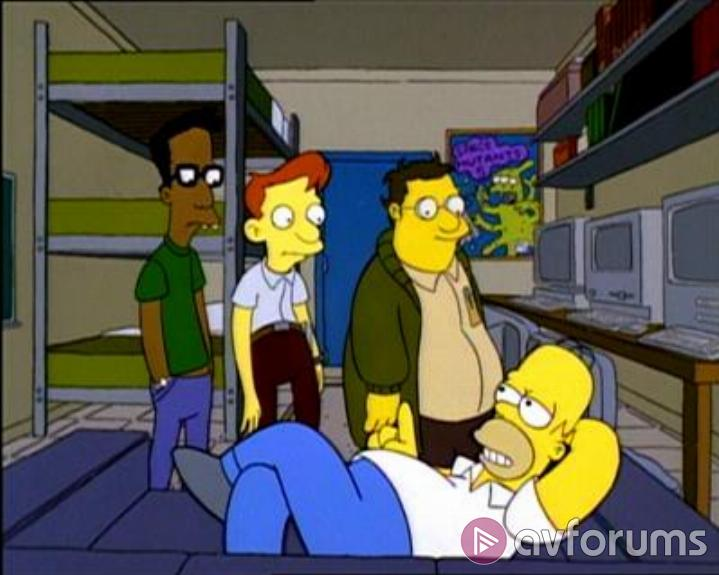 Simpsons, The: Simpsons.Com Picture