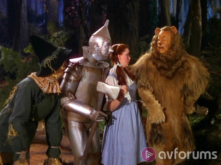 The Wizard Of Oz: 3 Disk Collectors Edition Picture