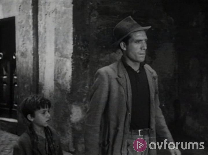 The Bicycle Thieves Sound
