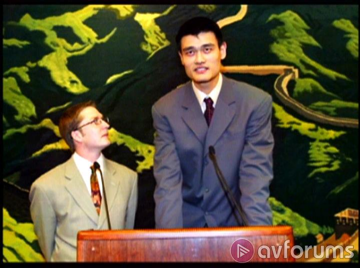 Year Of The Yao Picture