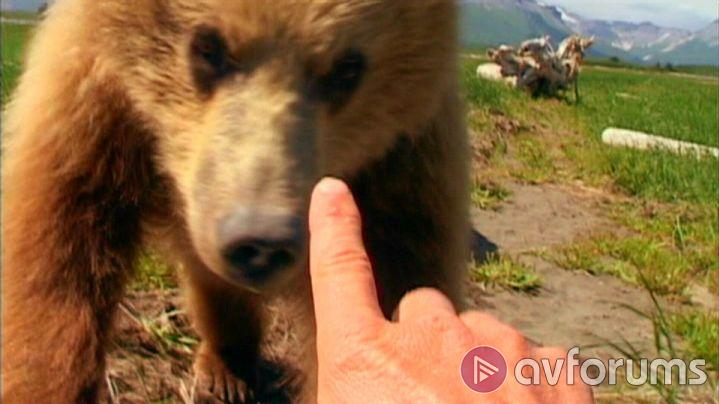 Grizzly Man Extras