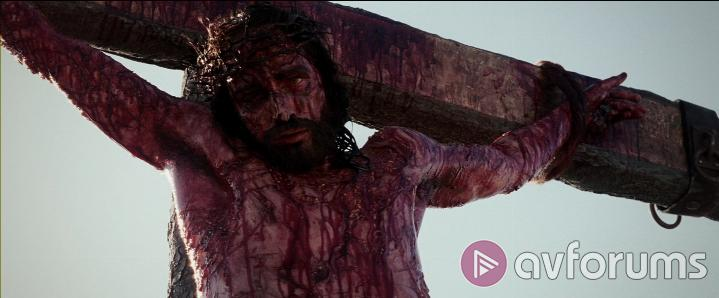 The Passion Of The Christ: The Definitive Edition Picture