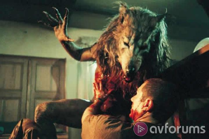 Dog Soldiers Sound