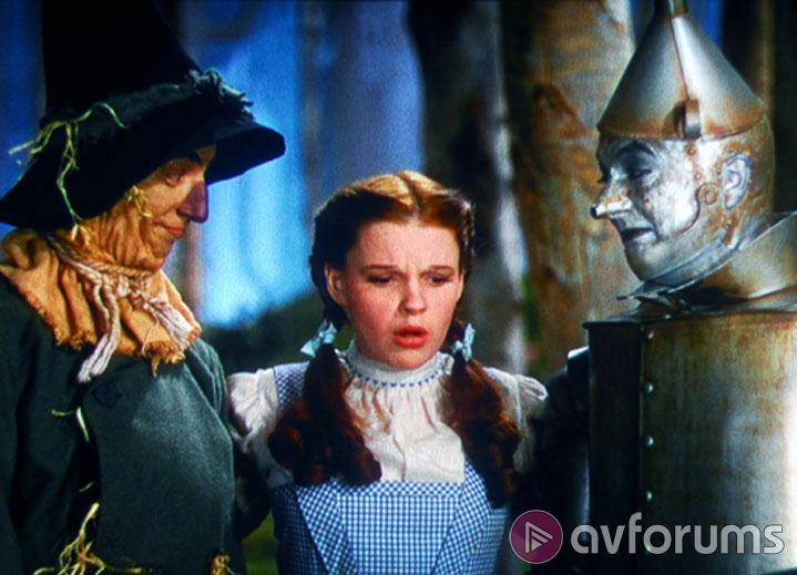 The Wizard Of Oz Extras