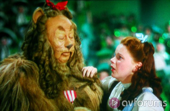 The Wizard Of Oz Verdict
