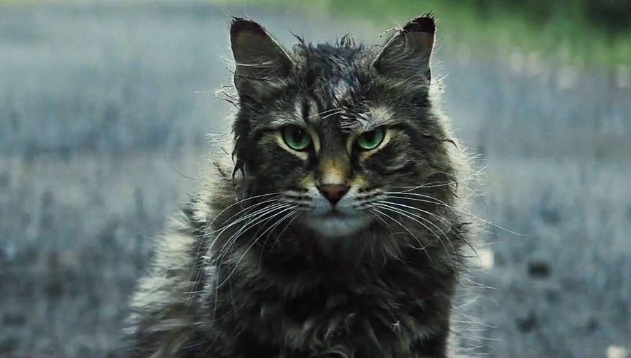 Pet Sematary 4K Blu-ray Review