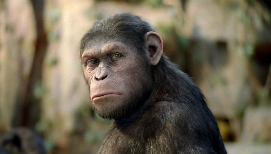 Rise of the Planet of the Apes Ultra HD Blu-ray Review