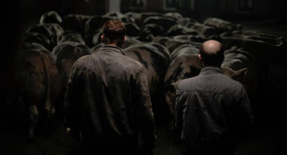 Bullhead Movie Review