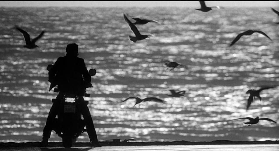 Rumble Fish - Limited Edition Blu-ray Review