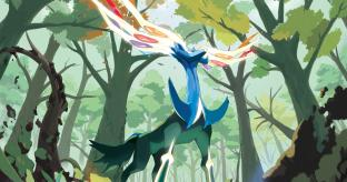 Pokemon X 3DS Review