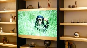 VIDEO: Panasonic demonstrate transluscent Surface TV at CES 2016