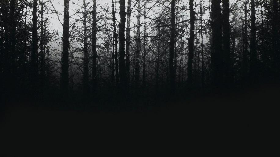 The Blair Witch Project Review