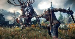 The Witcher 3: Wild Hunt Rolling PS4 Review